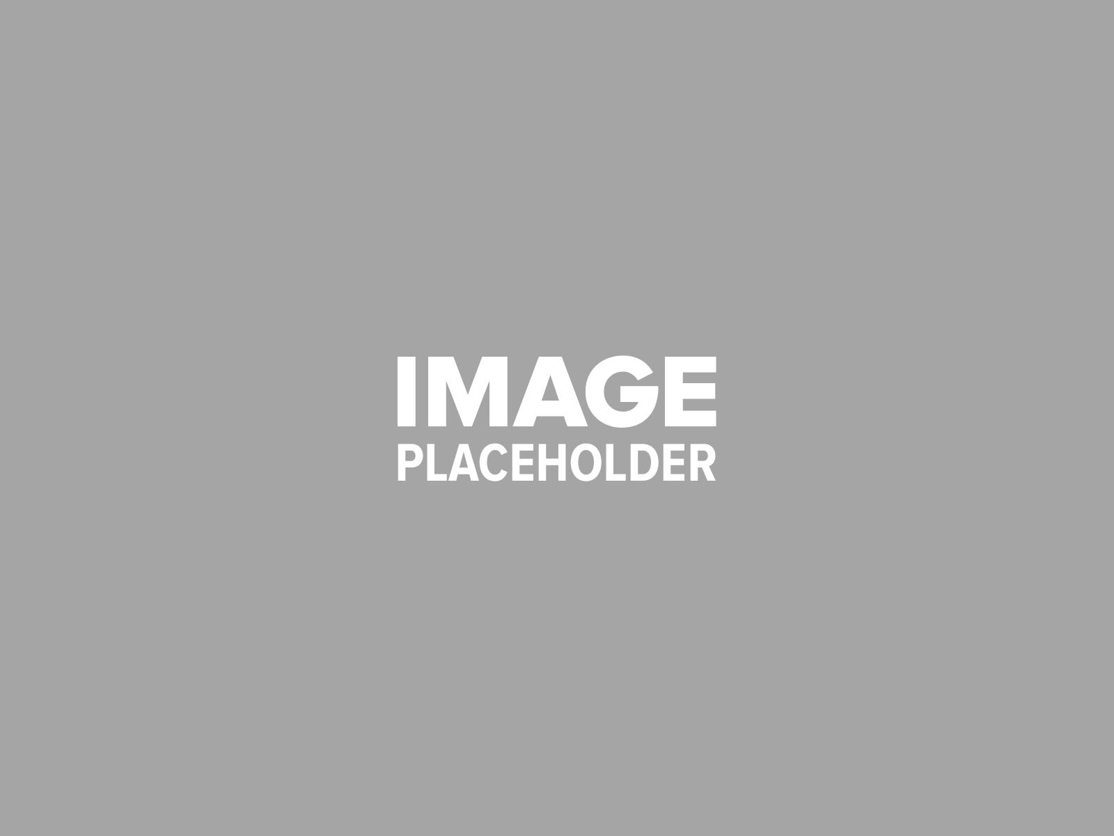 pojo-placeholder-3